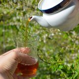 Teapot with fragrant tea and glass, tea poured into a glass Stock Photo