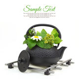 Teapot with fresh herbs Royalty Free Stock Photo