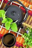 Teapot with fresh herbs Royalty Free Stock Photos