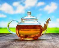 Teapot of fresh tea on natural background.  Royalty Free Stock Photography