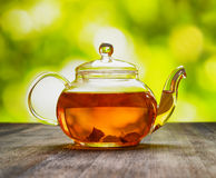 Teapot of fresh tea on natural background Royalty Free Stock Images