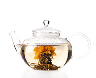 Teapot with green herbal tea isolated Royalty Free Stock Images