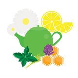 Teapot with herbals and fruits. Green Tea kettle vector illustration Stock Photos