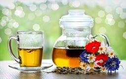 Teapot i filiżanka ziołowa herbata Obraz Stock