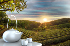Teapot with nice background Stock Image