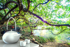 Teapot with nice background Stock Photo