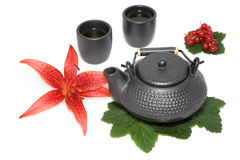 Teapot and two cup Stock Image
