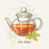 Teapot. Vector Illustration with glass teapot on color  background Royalty Free Stock Photos