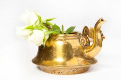 Teapot with white roses Royalty Free Stock Photos