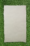 Tear Brown Paper On Green Grass Background Stock Image
