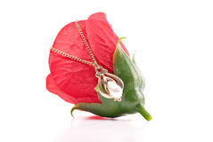 Tear Drop Pearl 14K Gold Necklace on Fake Rose Bud Royalty Free Stock Photos