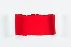 Tear red paper pieces of paper on white Royalty Free Stock Photo