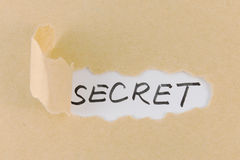Teared paper with secret text Royalty Free Stock Photography