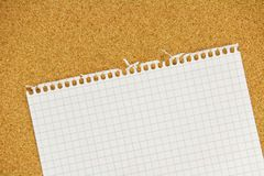 Teared sheet. Teared notebook sheet with ragged irregular edges on cork background Royalty Free Stock Photos