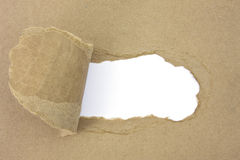 Tearing paper. Brown ripped paper on white royalty free stock photography
