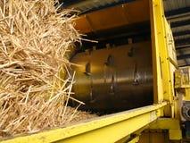 Tearing straw Stock Photos