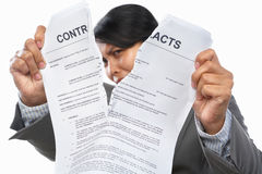 Tearing up the contacts Royalty Free Stock Photo