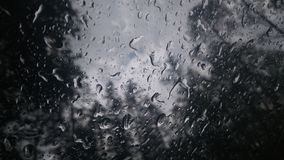 ~Tears de Rain~ Imagenes de archivo