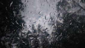 ~Tears van Rain~ Stock Afbeeldingen