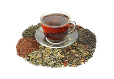 Teas - assorted Royalty Free Stock Photography