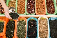 Teas och kryddor Royaltyfri Fotografi
