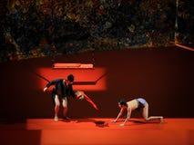Tease-Modern Ballet:Trollius chinensis Royalty Free Stock Images