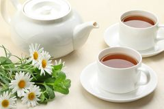 Teaset on table Royalty Free Stock Images