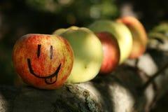 Teasing apple on branch. Royalty Free Stock Photos