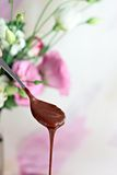 Teaspoon with chocolate ganache Royalty Free Stock Images
