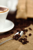 Teaspoon of coffee with beans Royalty Free Stock Photography