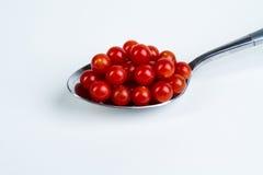 TeaSpoon pomidory Zdjęcia Stock
