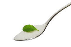 Teaspoon with sugar and stevia leaf. A teaspoon filled with sugar and stevia leaf on top isolated on a white background Royalty Free Stock Photography