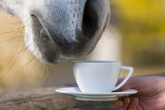 Teatime images libres de droits