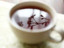 teatime fotografering för bildbyråer
