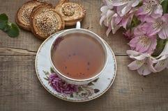 teatime Stockfotografie