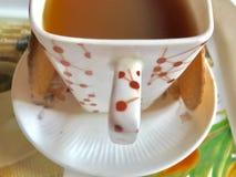 teatime Royaltyfri Bild