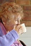 Teatime del pensionista Imagen de archivo libre de regalías