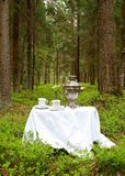 Teatime in forest. Tea time place in forest Stock Image