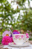 Teatime in garden Royalty Free Stock Images
