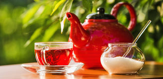 Teatime på naturen Arkivbilder