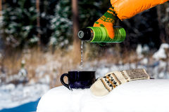 Teatime in winter forest Stock Image