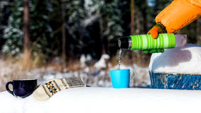 Teatime in winter forest Stock Photography