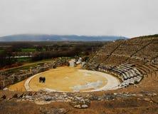 Teatro del greco antico di Filippoi Immagine Stock