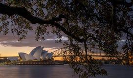 Teatro dell'opera a Sydney Fotografia Stock Libera da Diritti