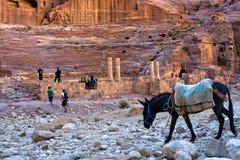 Teatro en el Petra, Jordania Imagenes de archivo