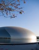 Teatro nazionale di Pechino grande Immagini Stock Libere da Diritti
