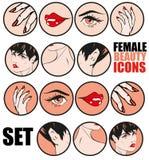Tebeos clásicos retros fijados iconos femeninos Pin Up Style del vector de la belleza Imagen de archivo