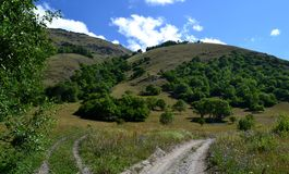 Teberda Karachayevo-Cherkessia da reserva natural, Rússia Fotos de Stock Royalty Free