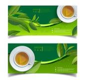Teblad och droppar för blått för baner för grönt te för vektor horisontalpå vektor illustrationer