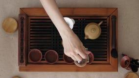 Teceremoni, från en exponeringsglastekanna, på koppar häller doftande och användbart te lager videofilmer